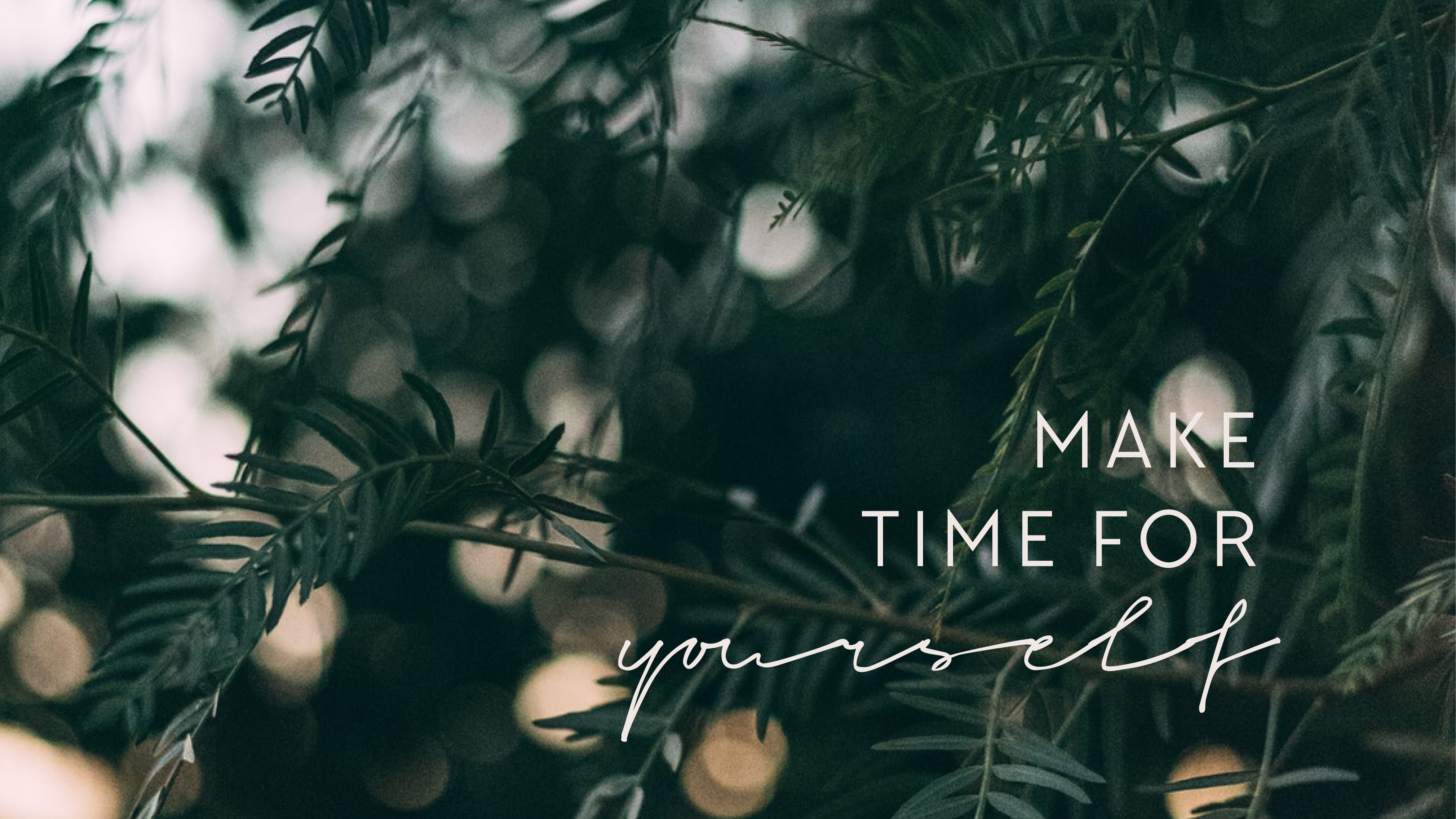 Free Wallpapers Discover new Designs every Month