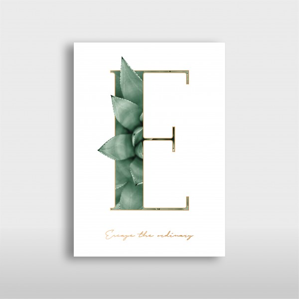 "JO & JUDY - Letter Print ""E"" - Green"
