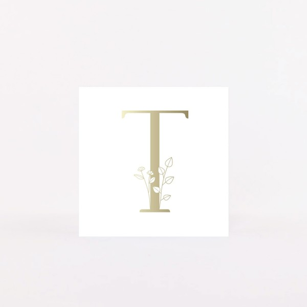 "Letter Postcard ""T"""