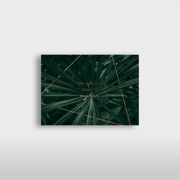 "JO & JUDY - Card ""Explore"" - Green"
