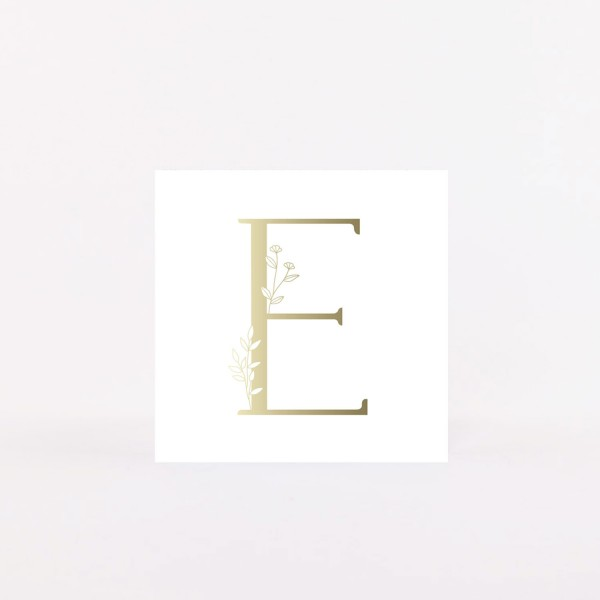 "Letter Postcard ""E"""